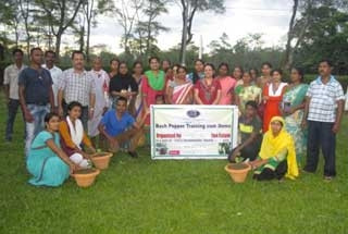 Bush Pepper Training by Lady Custodian of Dibrugarh Circle Estates