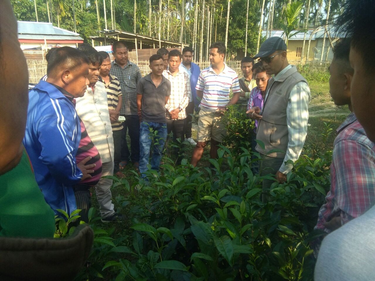 Training programme for STG`s of Chingri Small Tea Growers Society- Karbi Anglong