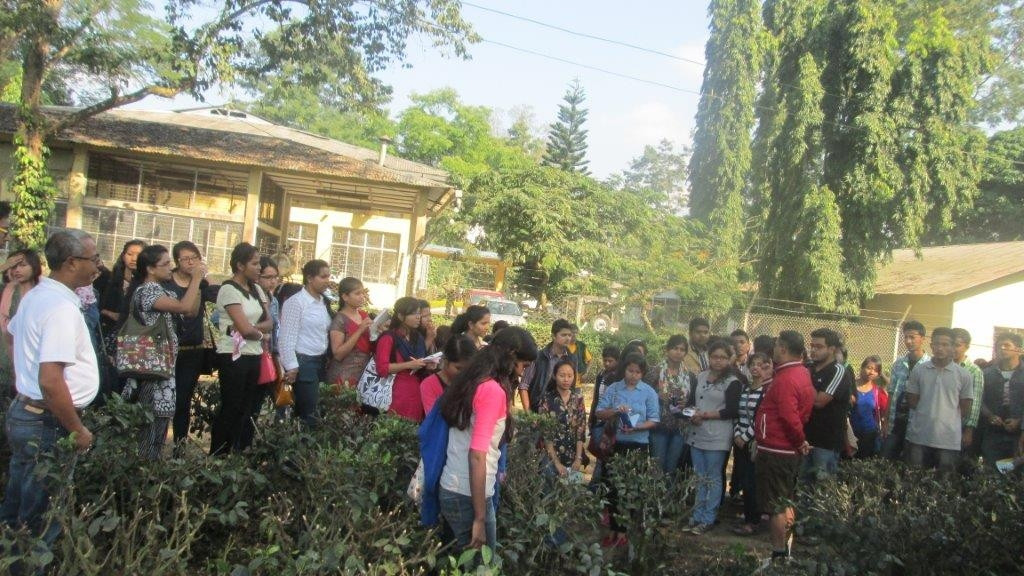 Educational tour by AAU Jorhat students to Teok Tea Estate