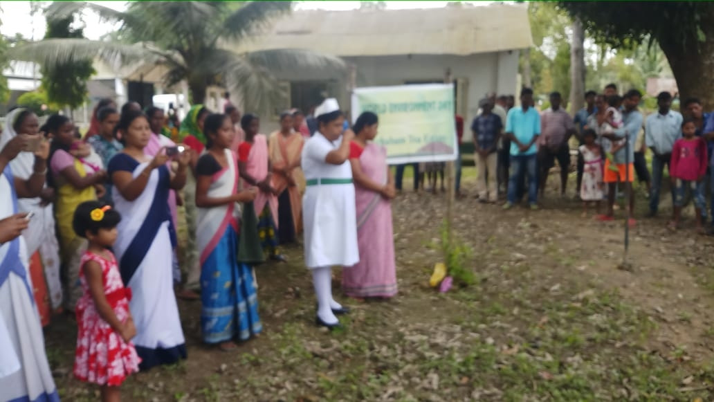 World Environment Day - Achabam Tea Estate