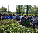 Inhouse Workshop on Pruning and Cold Weather Operations