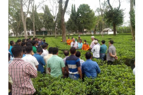 Tocklai, tea industry join hands