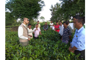 Training programme for STG's at Jagaran Tea Growers Society